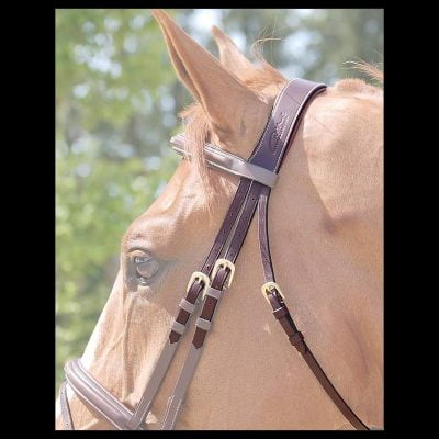 Bridlework Accessories