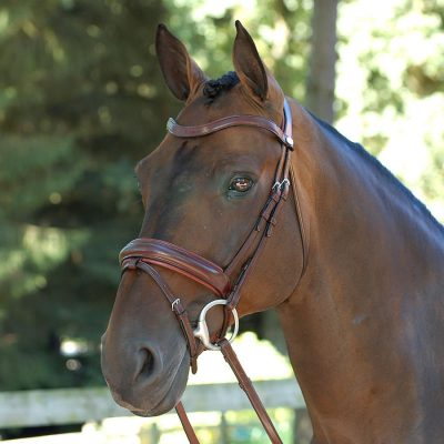 Build Your Dy'on Bridle
